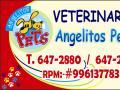 Angelitos Pets   E.i.r.l